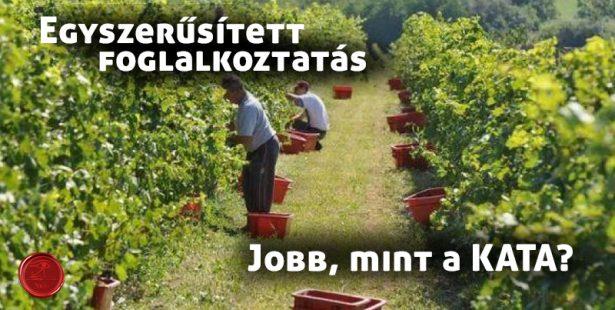 egyszerűsített munkavállalás alkalmi munkavállalás 2018